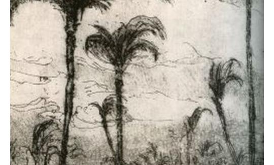 הרמן שטרוק, חיפה V (פרט), 1923